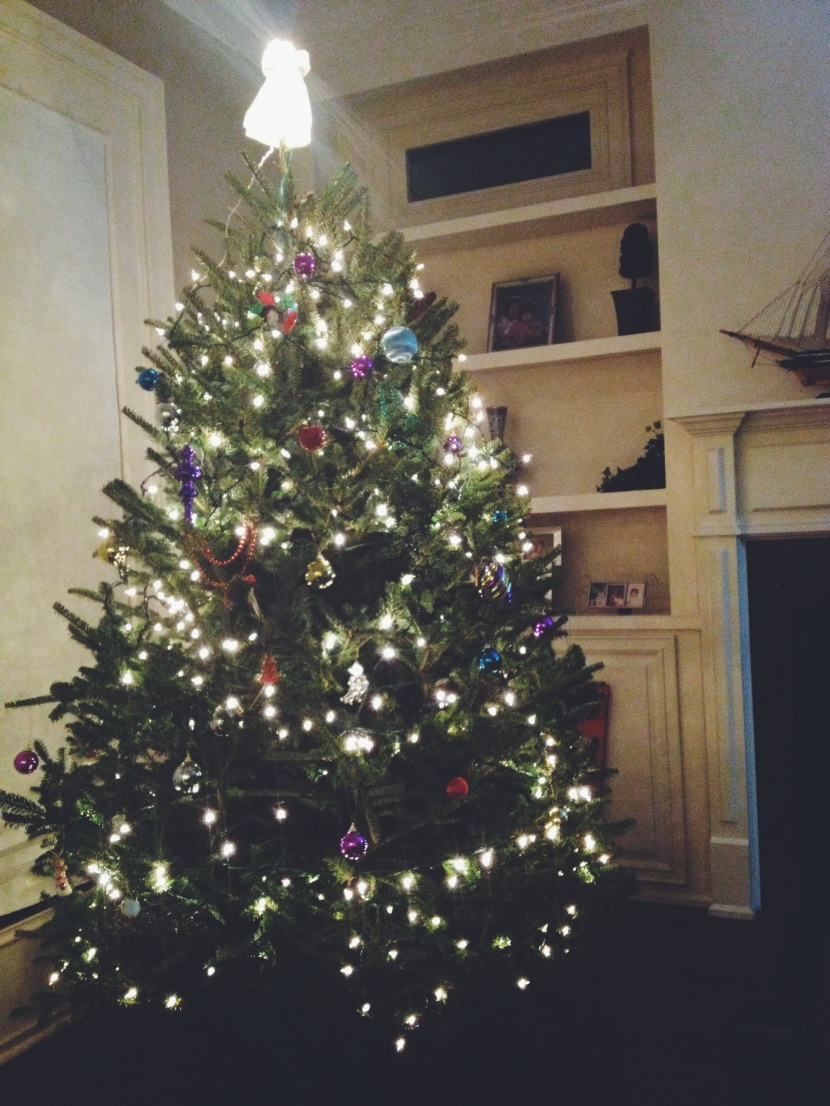 LOOK AT OUR BEAUTIFUL HOLIDAY TREE!