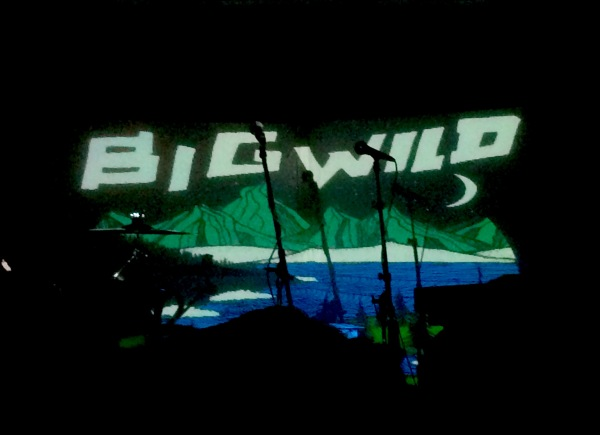big wild 1